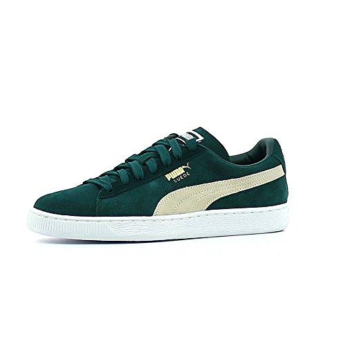 Puma Sneaker Verde