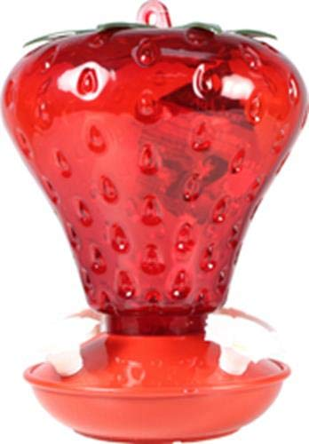 Audubon (na554099101040Oz Gap Strawberry Hummingbird Feeder, rot
