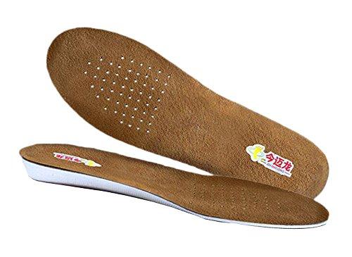 Hauteur de la chaussure respirante Augmentant 1 cm / 0,4 pouces Semelles