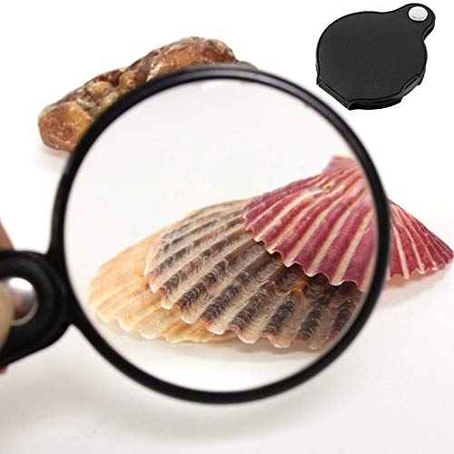 Magnifier 90mm - Portable 5x Black Mini Pocket Jewelry Magnifier Magnifying Glass Loupe Reading Travel Camping - Glass Photo Towl Loupe Mirror Dome Magnifying D5300 Lens Power Magnification La