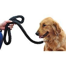 Laisse chien corde - Laisse corde gros chien ...