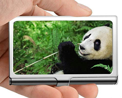 Visitenkartenetui, gefährdet Wildlife Giant Panda Nature Visitenkartenetui Visitenkartenetui (Edelstahl)