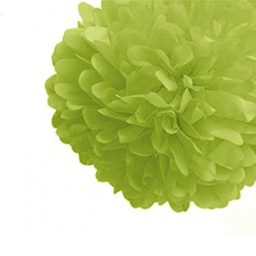 Hochzeit Tissue Dekorationen Papier Party Zeitgemäß Papier Craft Blume (Papier Blume Puffs)