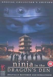 Ninja In The Dragon's Den [DVD]