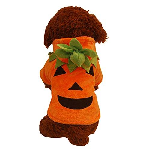 Pullover Halloween Weihnachten Kürbis Shirt Kostüm Kleidung, L, Pumpkin Costume-Back Length 12.20