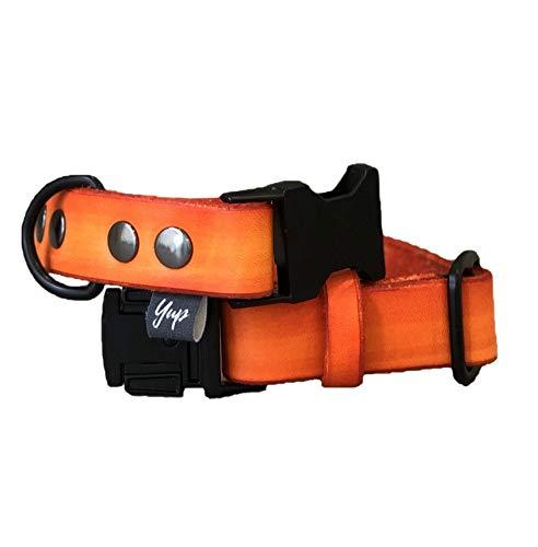 Arancione Handmade: Prodotti per animali domestici