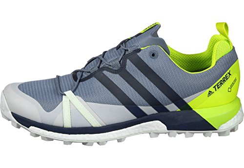 adidas Terrex Agravic Gore-Tex Chaussure Course Trial - SS18 gris bleu vert