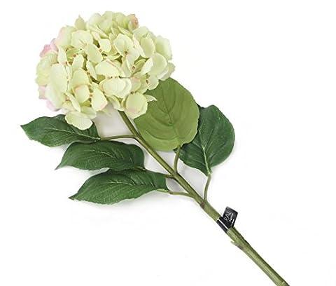Floral Elegance künstlichen 87cm Single Stem grün und pink Wuschel Hortensien x 6–Luxus Silk Flower Range