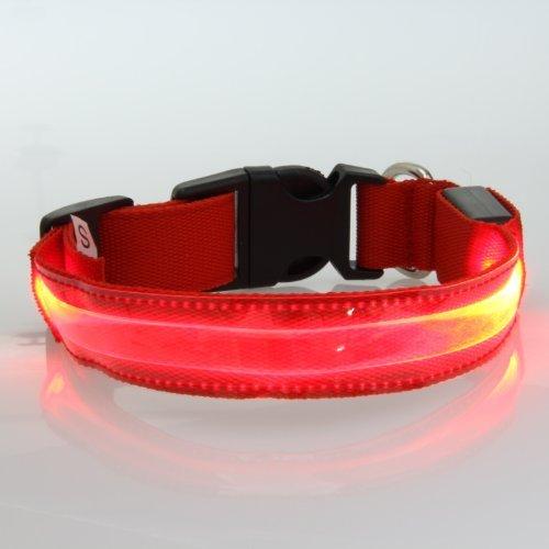 Bild von: Lesypet® LED-Hundehalsband Haustier blinkende Lichter Hundesicherheits führte Kragen, Rote-M