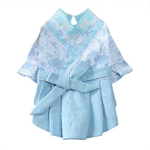 JKRTR Haustier Hund Katze Kleid Spitze Bogen Knoten Prinzessin Sommer Breathable Kleid Kleidung Elegantes Mädchen (Blau,S)