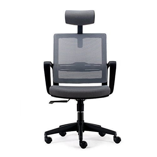 INTEY Mesh Back Ergonomic Office Chair Swivel Desk Chair with Adjustable Headrest, Seat Height, Tilt Tension and Lumbar Support