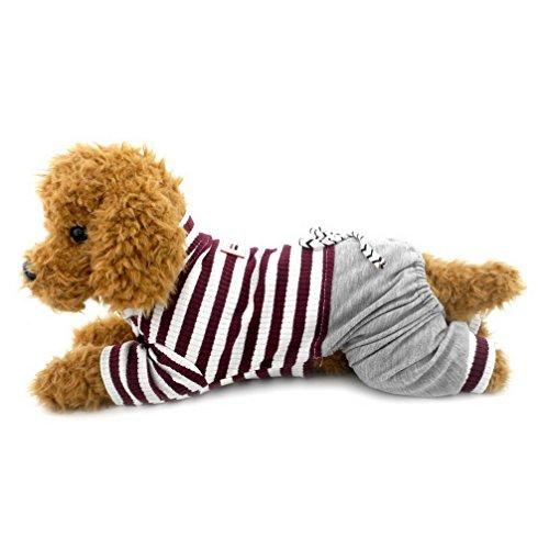 Hunde Kostüm Matching - ranphy Kleiner Hund/Katze Overall mit Denim Hose Hund Outfits Katze Kleidung Sommer Pet Stripe Shirts