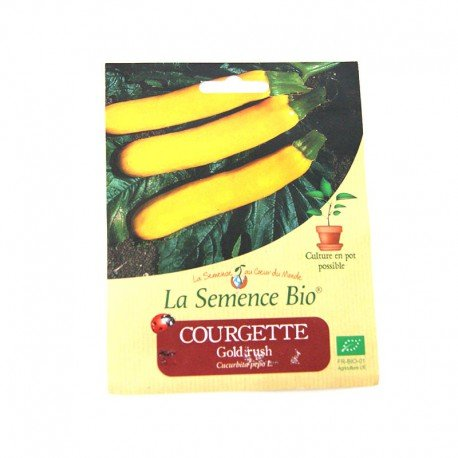 Graines Bio - Courgette Gold Rush