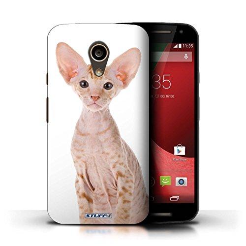 Kobalt® Imprimé Etui / Coque pour Motorola Moto G (2014) / Bleu britannique conception / Série Espèces de chats Peterbald
