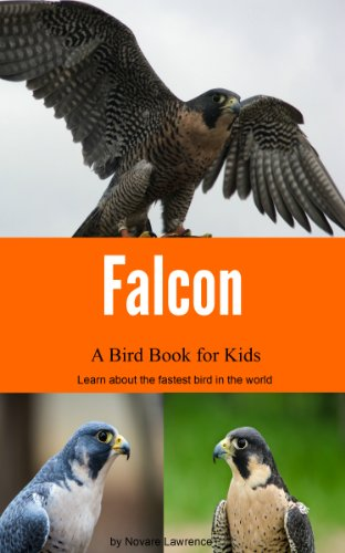 Falcon: A Bird Book for Kids (English Edition)