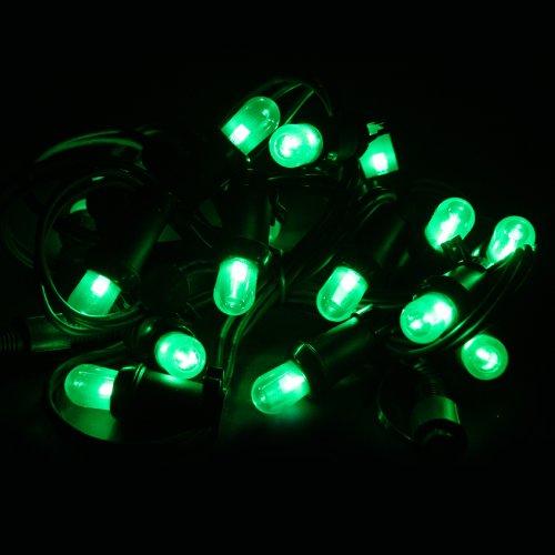 House of Fun Cordoniere Extérieur LED Vert