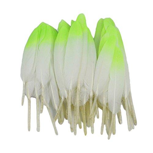 (D DOLITY 12 Stück Schöne Natürliche Naturfedern Gänsefedern Echte Gänsefedern Bastelfedern Schmuckfedern Zierfedern - weiß fluoreszierend grün)