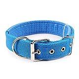 HAOKAN Haustier Halsbänder Komfortable Einstellbare Nylonband Hundehalsband Für Kleine Und Große Hundehalsbänder