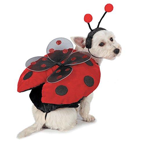 Casual Canine Marienkäfer-Kostüm für Hunde, Small, rot (Pet Marienkäfer Kostüm)