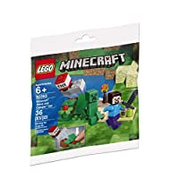 LEGO Minecraft Steve and Creeper Polybag Set 30393 (Bagged)