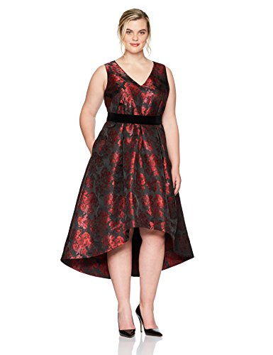Eliza J Women's Plus Size Floral Fit and Flare Dress Formal
