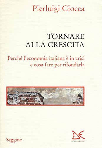 Tornare alla crescita. Perché l'economia italiana è in crisi e cosa fare per rifondarla