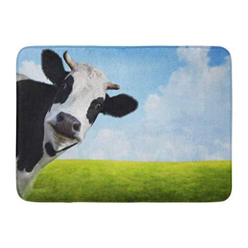 Fußmatten Bad Teppiche Outdoor/Indoor Fußmatte blau Tier lustige Kuh auf grünen Sommer Wiese verschwommen Gras Landschaft Badezimmer Dekor Teppich Badematte - Badezimmer Gras-teppich