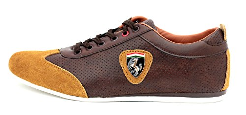 JAS Mens Casual Trainers Lace Up Leather Sport Smart Shoes UK Size 6 7 8 9 10 11 (UK 7/EU 41, Brown)