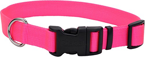 Artikelbild: Coastal Pet Products Adjustable Nylon 5/8 Dog Collar W/Tuff Buckle-Neon Pink, Neck Size 10'-14'