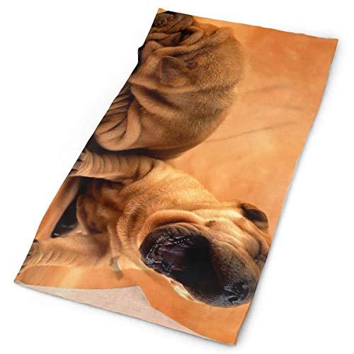 Pug Puppy Dog Sleep Life Headwrap Men Women Headwear Headband Neck Scarf Multifunction Hairband Magic Head Scarf Bandana Retro Headdress Face Mask Neck Gaiter