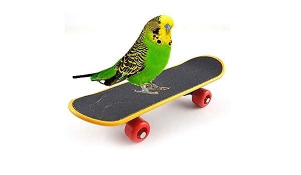 Bird Parrot Intelligence Toy Mini Training Skateboard for Parrot Budgie Parakeet Cockatiels Lovebird Conure Small and Medium Bird Funny Perch Toy