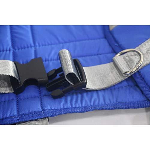 41VB9d8XPqL - Hmlopx Paciente Levantar Estar Ayudar Cinturón Honda En Pie Sentarse A Estar Capacidad Completamente Acolchado Antideslizante Interior Almohadilla No Subirse Mas Rapido Más Fácil Más Seguro Traslados