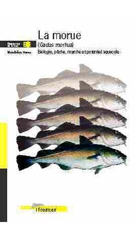 la-morue-gadus-morhua-biologie-pche-march-et-potentiel-aquacole