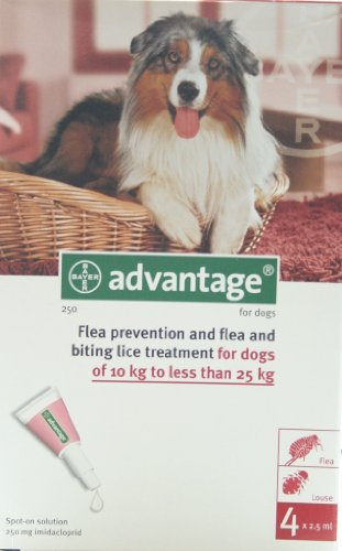 advantage-250-for-dogs