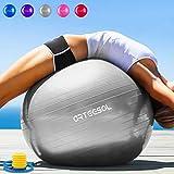 arteesol Gymnastikball Pilates Ball 45cm / 55cm / 65cm / 75 cm inkl. Pumpe Anti-Burst Sitzball für Yoga Exercise Fitness Physiotherapie (5 Farben) (Silber, 85cm)