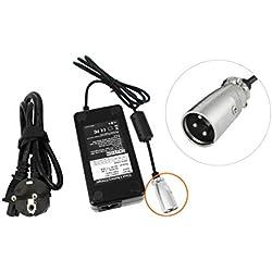 PowerSmart Akku Ladegerät 42V 1,35A M362DE für das E-Bike Pedelec ACK4201 36V Akku Batterie mit 3-Pin Stecker