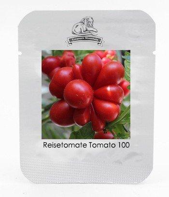 HOO PRODUCTS - Ungewöhnliche und seltene Erbstück Reisetomate Tomate Lycopersicon lycopersicum Samen, Profi Pack 100 Samen/Packung Loss Förderung!