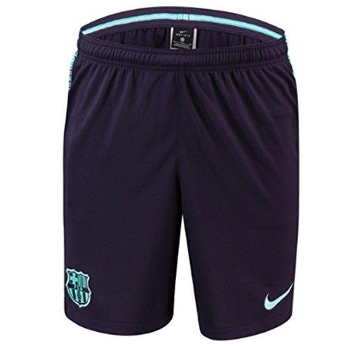 Nike 2018-2019 Barcelona Squad Training Shorts (Purple)
