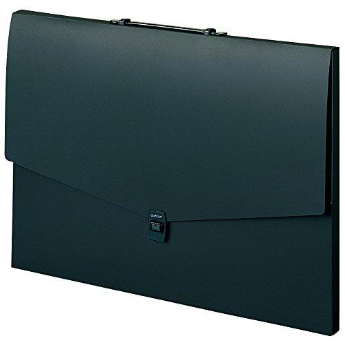 Budgerigar Alter port case <flat type> A2 Black ART-902-60 (japan import) Flat Port