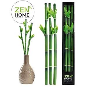 Zen Home Bambu DE LA Suerte Artificial, Plantas Artificiales Plantas Artificiales Decorativas, Planta Artificial, bambú…