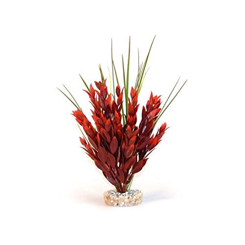 Sydeco Plastik Pflanzen Deko für Aquarien/Terrarien Ruscus Large 26cm