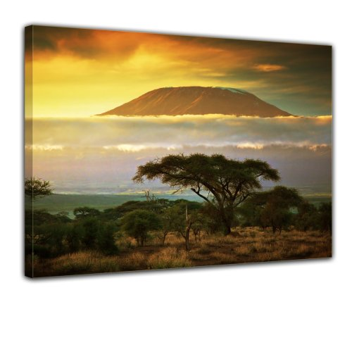 Wandbild - Kilimandscharo mit Savanne in Kenya - Afrika - Bild auf Leinwand - 70x50 cm 1 teilig - Leinwandbilder - Landschaften - Tansania - Nationalpark - Sonnenuntergang -