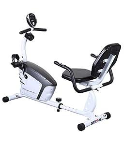 Monex Body Gym Recumbent Egos II Exercise Bike