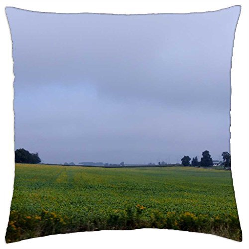 beyond-the-field-throw-pillow-cover-case-18