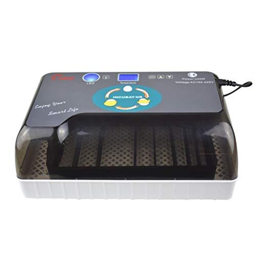ALYR Eier Brutapparate Inkubator, Mini Incubatrice mit Temperaturregelung für Hühner Ente Gans und Wachtel