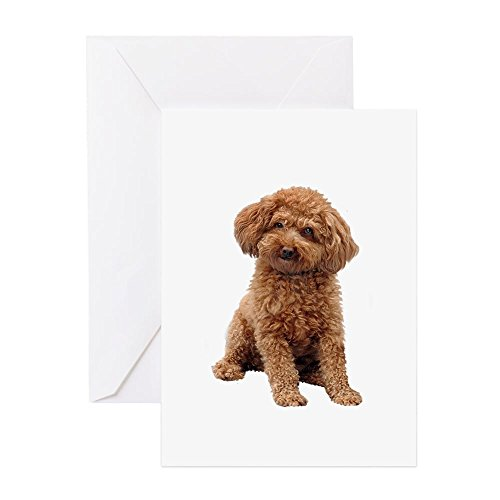 CafePress-poodle- (apricot2)-Grußkarte, Note Karte, Geburtstagskarte, innen blanko, glänzend -