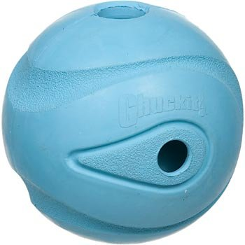 Chuckit! The Whistler Ball from DKCL9