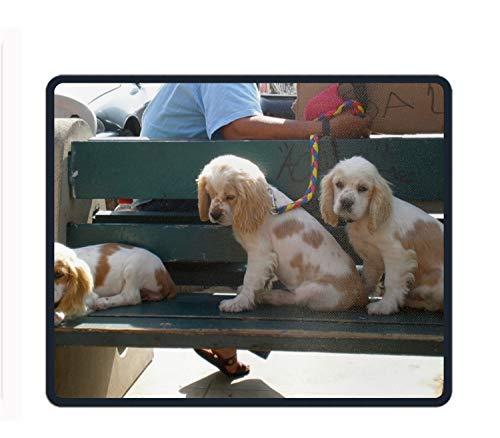 Mauspad, Personalisierbar, rechteckig, mit Ölgemälden, Adorable Dogs, Einheitsgröße (Adorable Outfits)
