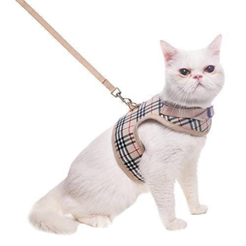 BINGPET Katzengeschirr mit Leine - verstellbare, weiche Mesh-Weste für Spaziergänge, M -