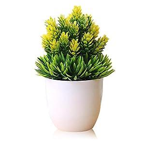 AOLVO - Planta Artificial de